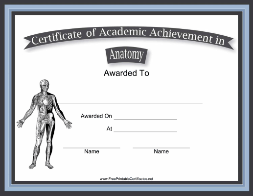 Anatomy Academic