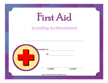 First Aid Level 2 Badge