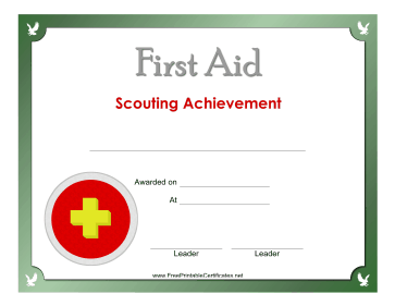 First Aid Silver Badge