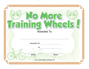 No Training Wheels Bicycle