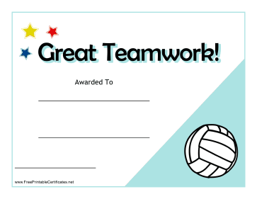 Teamwork Certificate Volleyball