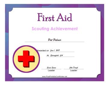 First Aid Level 2 Badge certificate