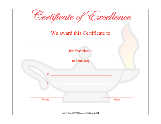 Excellence in Nursing certificate