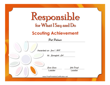 Responsible Badge certificate