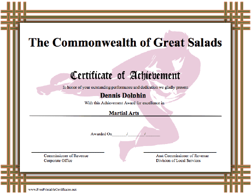 Achievement - Karate certificate