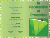 Certificate to Recognize Promotion