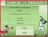 Baseball Participation