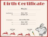 Certificates for kids free printable certificates rabbit birth yelopaper Images